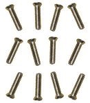 Stainless Phillips Screws - Set of 12